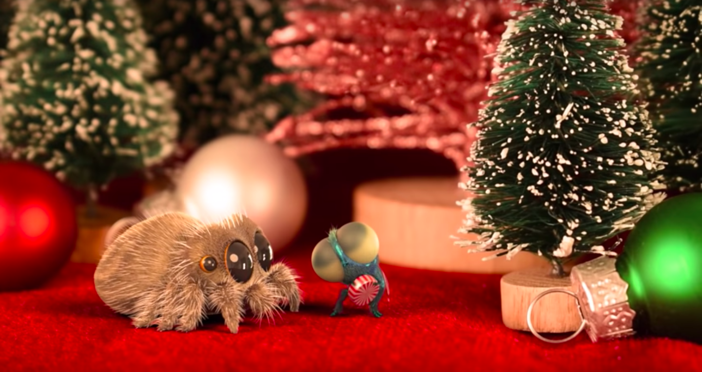 VIDEO: Lucas the Spider Celebrates Christmas With Fly ...