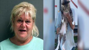 Thistle charged with animal cruelty